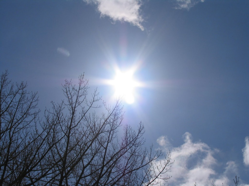 Basking in the sun is one way to obtain vitamin D