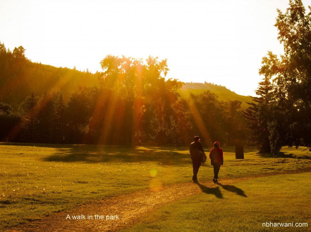 A walk in the park is healthier than smoking cigarettes. (Dr. Noorali Bharwani)
