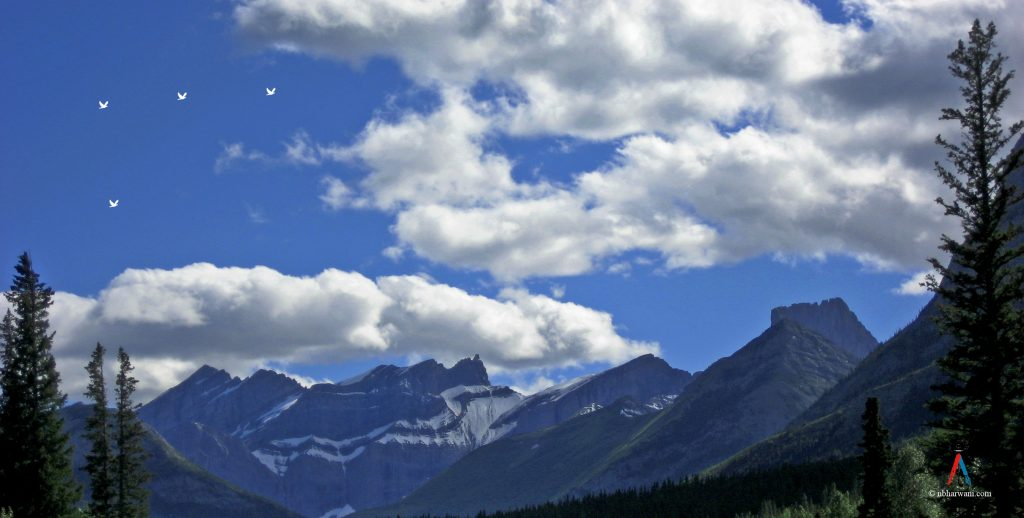 A beautiful view of the mountains in Canmore, Alberta. (Dr. Noorali Bharwani)