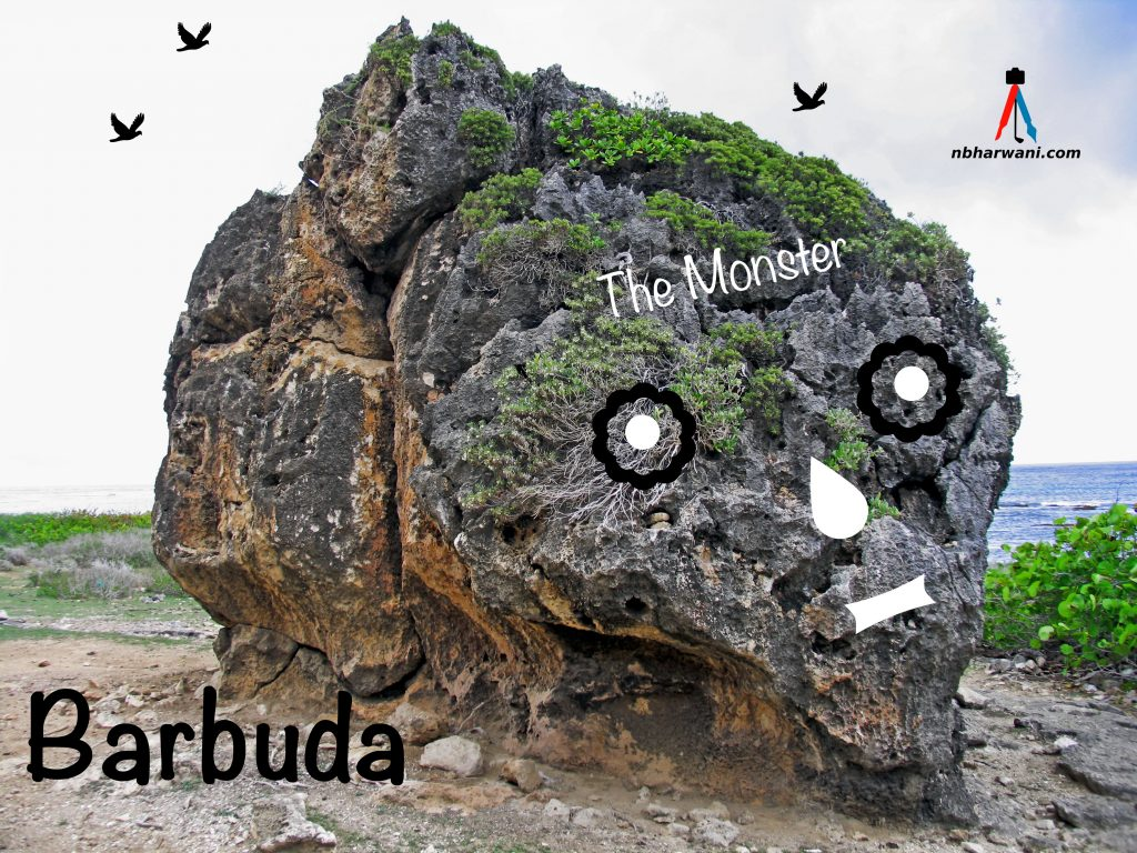 A rock formation in Barbuda! (Dr. Noorali Bharwani)