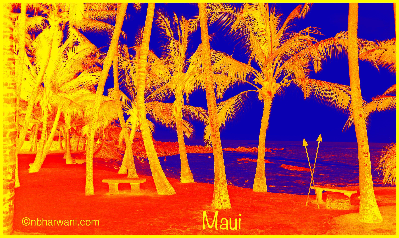 Maui, Hawaii (Dr. Noorali Bharwani)