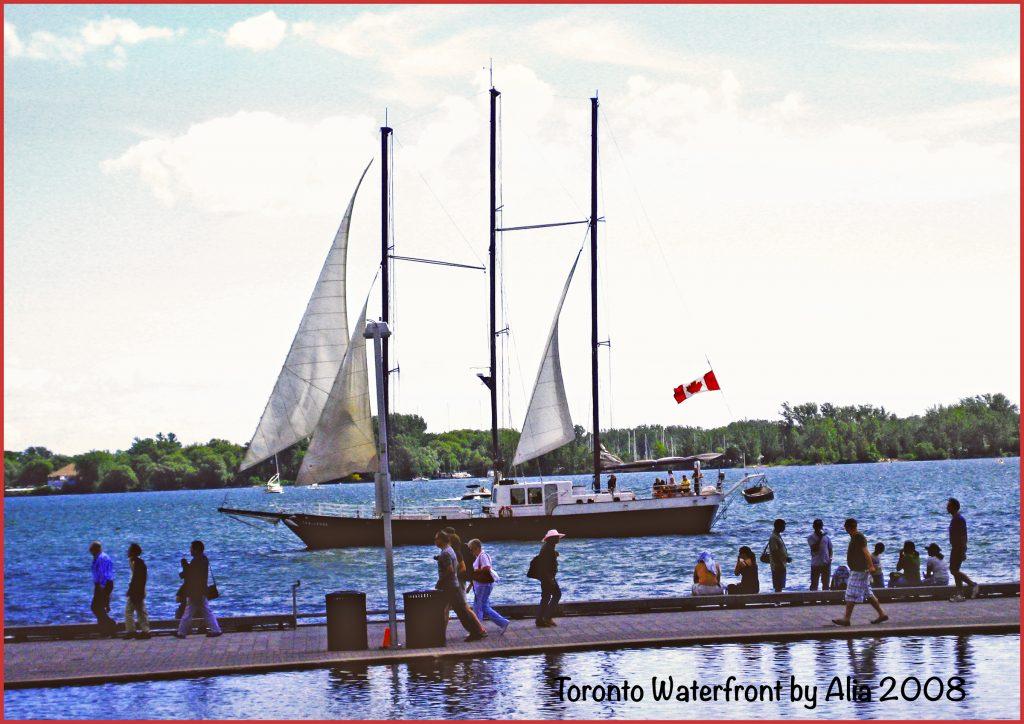 Toronto Waterfront (Alia Bharwani)