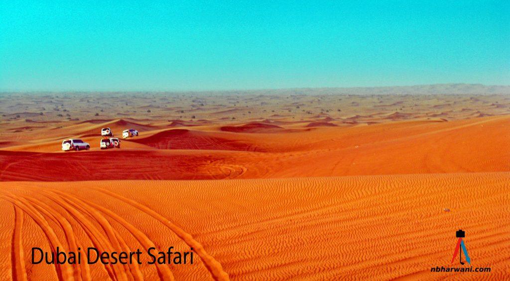 Dubai Desert Safari. (Dr. Noorali Bharwani)