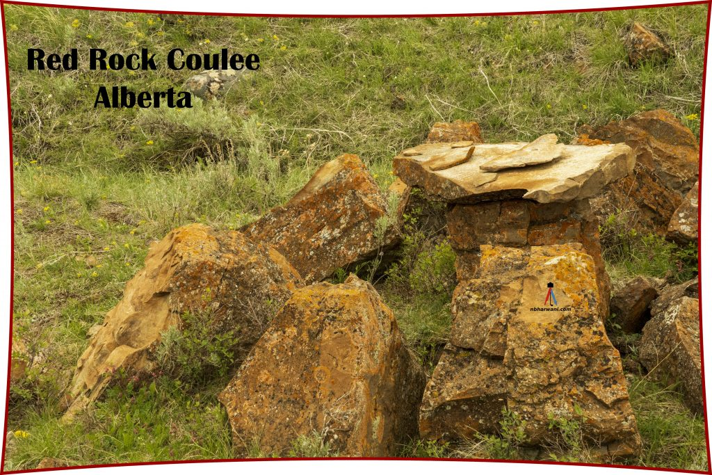 Red Rock Coulee (Dr. Noorali Bharwani)