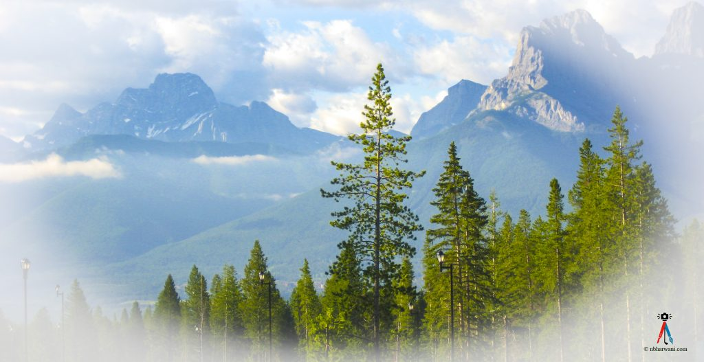 Silvertip Golf Course in Canmore, Alberta. (Dr. Noorali Bharwani)