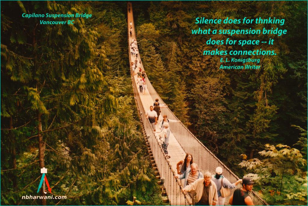 Capilano Suspension Bridge in Vancouver, BC. (Dr. Noorali Bharwani)